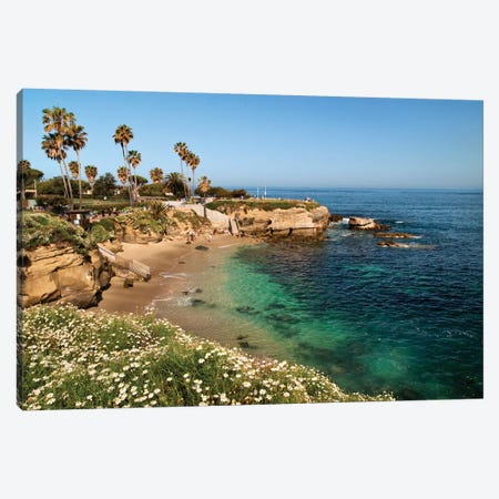 USA, California, La Jolla, Clear water on a spring day at La Jolla Cove Canvas Print #ANC26} by Ann Collins Canvas Artwork