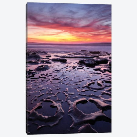 USA, California, La Jolla, Sunset at Coast Boulevard Park Canvas Print #ANC3} by Ann Collins Canvas Print