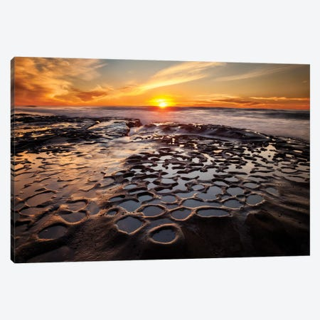 USA, California, La Jolla, Sunset at Hospital Reef Canvas Print #ANC4} by Ann Collins Canvas Artwork