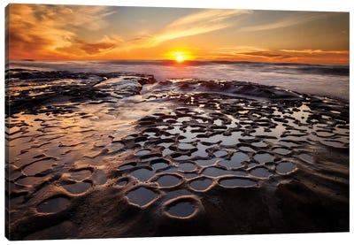 USA, California, La Jolla, Sunset at Hospital Reef Canvas Art Print