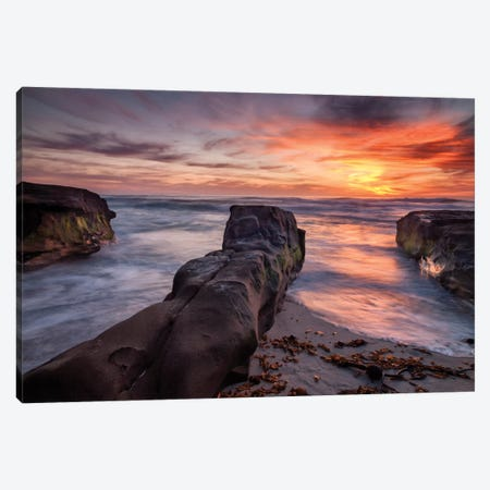 USA, California, La Jolla, Sunset, Coast Boulevard Park Canvas Print #ANC7} by Ann Collins Canvas Wall Art