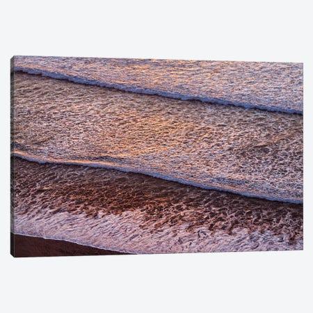 USA, California, La Jolla, Wave patterns at Black's Beach Canvas Print #ANC8} by Ann Collins Canvas Print
