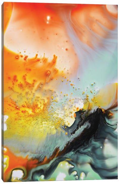 Liquid Series VI Canvas Art Print