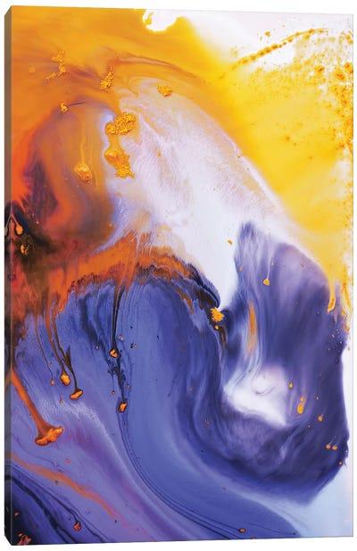 Liquid Series IX Canvas Art Print