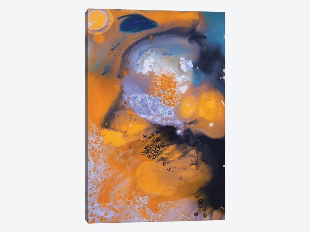 Liquid Series X by Andrada Anghel 1-piece Canvas Art