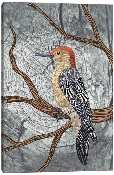 Woodpecker Canvas Print #ANG106