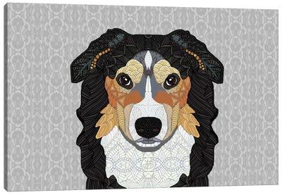 Zecke - Mountain Dog Canvas Art Print