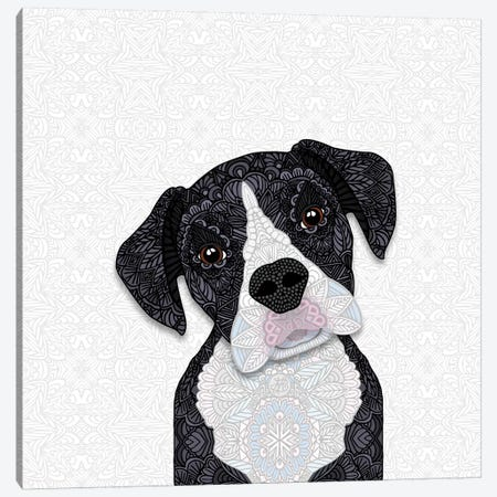Black & White Boxer Canvas Print #ANG110} by Angelika Parker Canvas Wall Art