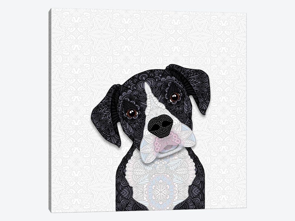 Black & White Boxer by Angelika Parker 1-piece Canvas Print