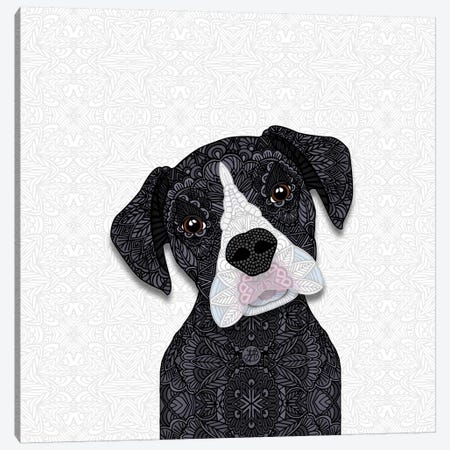 Black Boxer, White Snout Canvas Print #ANG112} by Angelika Parker Canvas Art