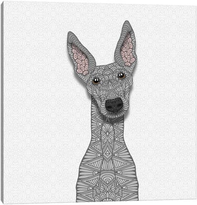 Blue Greyhound Canvas Art Print