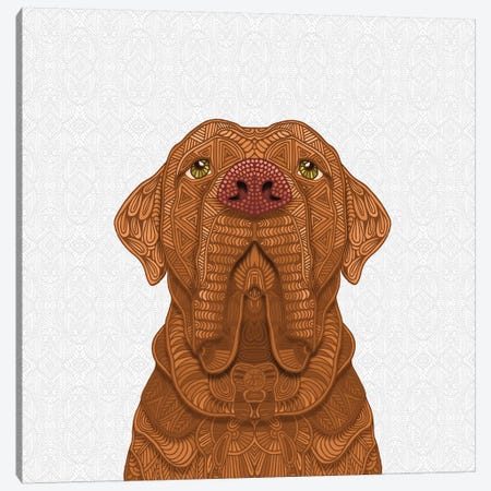 Bordeaux Mastiff Canvas Print #ANG119} by Angelika Parker Canvas Artwork