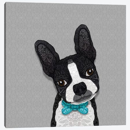 Bow Tie Boston Canvas Print #ANG121} by Angelika Parker Canvas Print