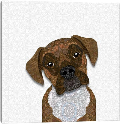 Brindle Boxer Canvas Art Print