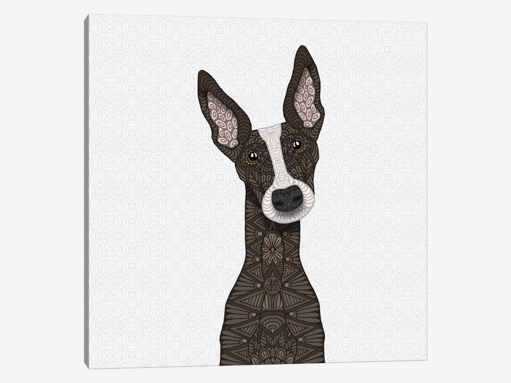 Brindle Greyhound, White Snout by Angelika Parker 1-piece Canvas Art Print