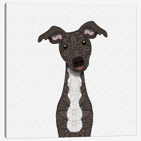 Brindle Iggy, White Belly Canvas Print #ANG126} by Angelika Parker Canvas Artwork