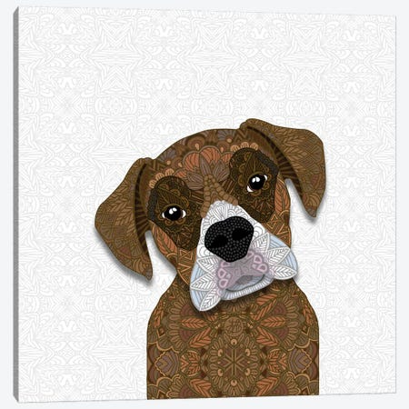 Brown Boxer, White Snout Canvas Print #ANG127} by Angelika Parker Canvas Wall Art