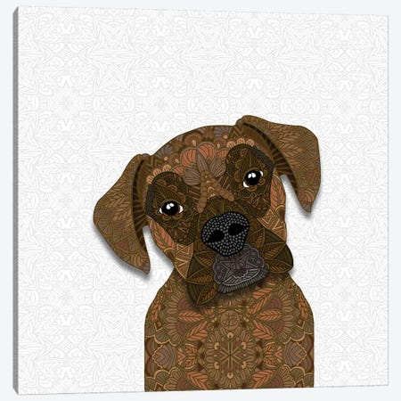 Cute Brindle Boxer Canvas Print #ANG134} by Angelika Parker Canvas Art Print