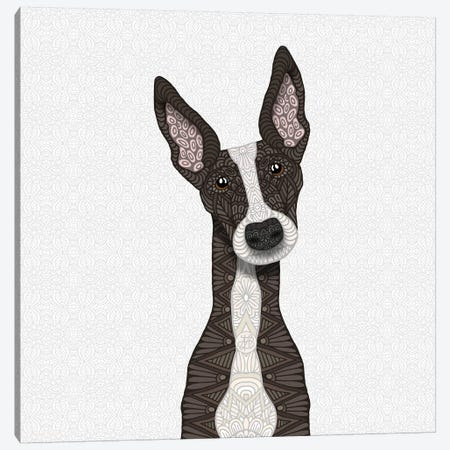 Cute Brindle Greyhound Canvas Print #ANG135} by Angelika Parker Canvas Art Print