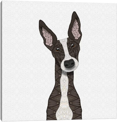 Cute Brindle Greyhound Canvas Art Print