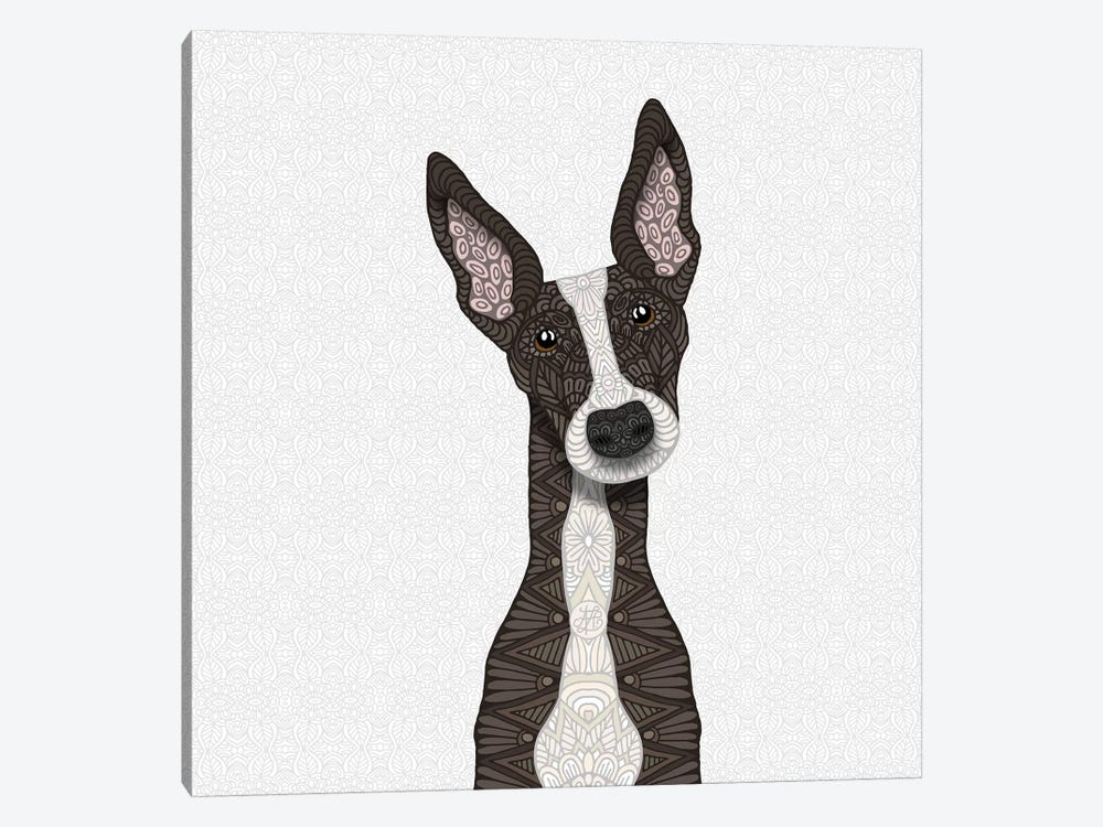 Cute Brindle Greyhound by Angelika Parker 1-piece Canvas Artwork