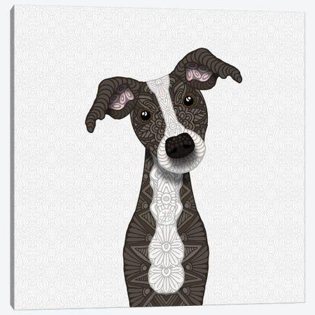 Cute Brindle Iggy Canvas Print #ANG136} by Angelika Parker Canvas Print