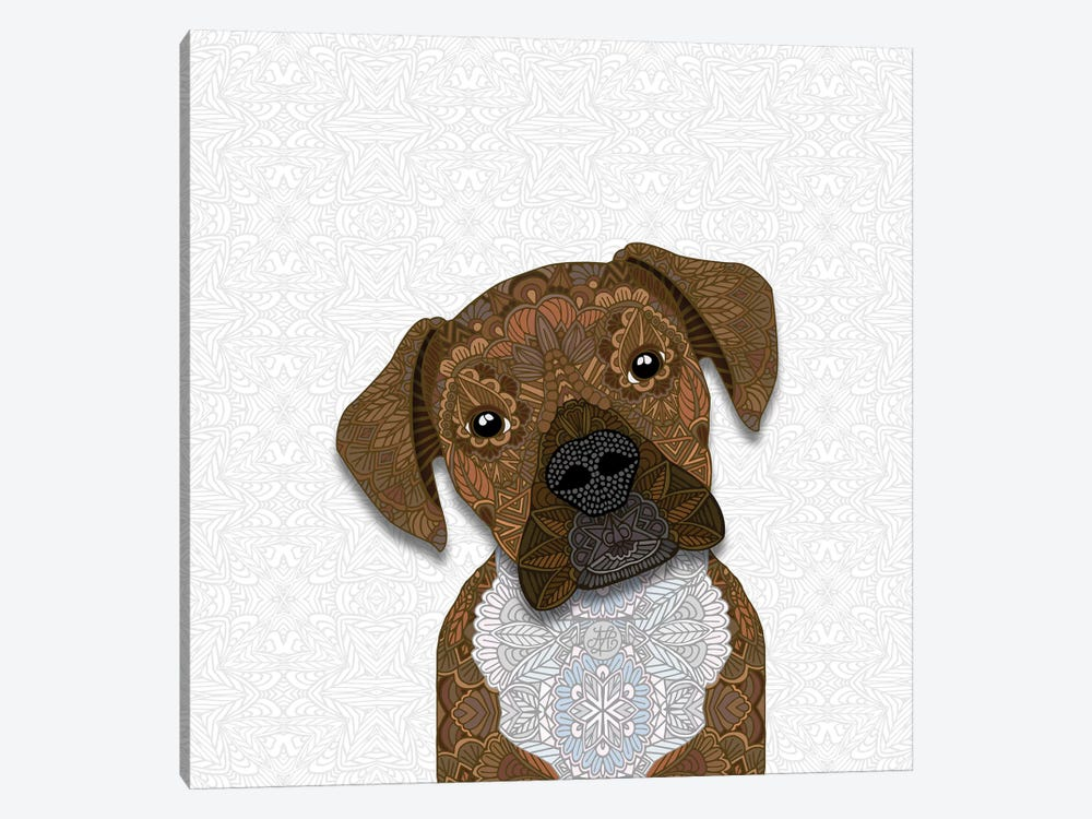 Cute Fawn Boxer by Angelika Parker 1-piece Canvas Print