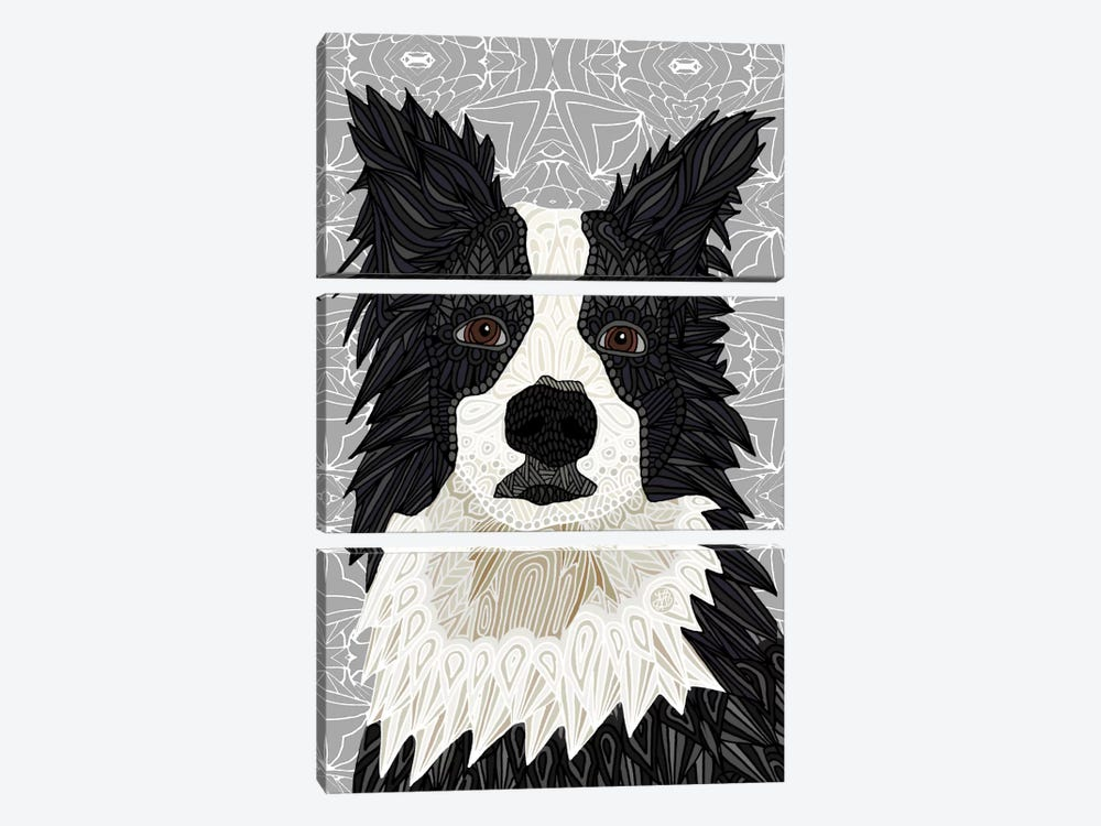 Border Collie 3-piece Canvas Art