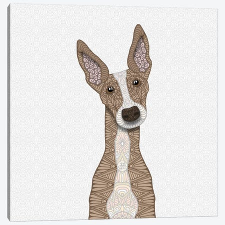 Cute Fawn Greyhound Canvas Print #ANG140} by Angelika Parker Art Print