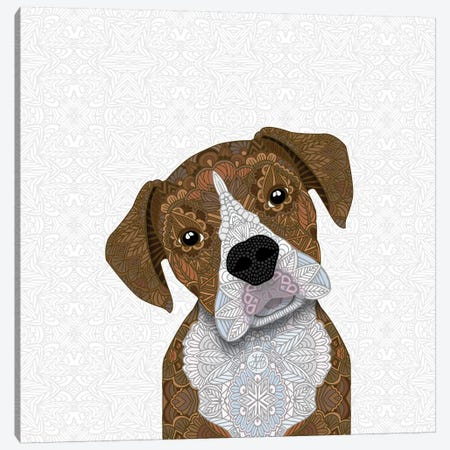 Fawn Boxer, White Snout Canvas Print #ANG147} by Angelika Parker Canvas Wall Art