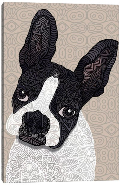 Bosten Terrier Canvas Art Print