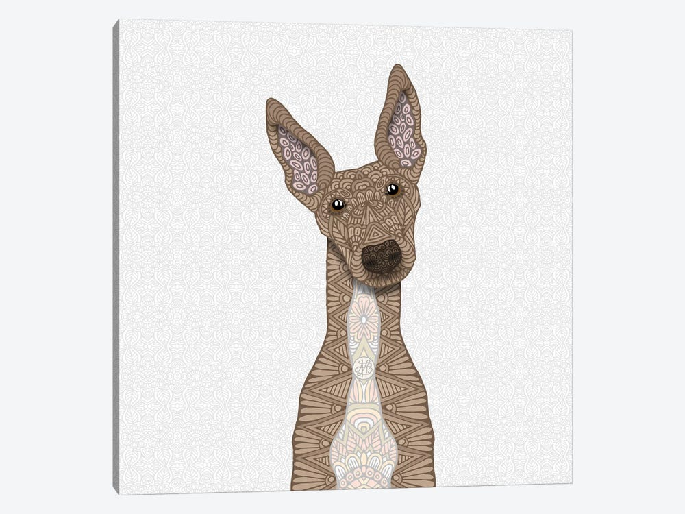 Fawn Greyhound, White Belly by Angelika Parker 1-piece Canvas Print