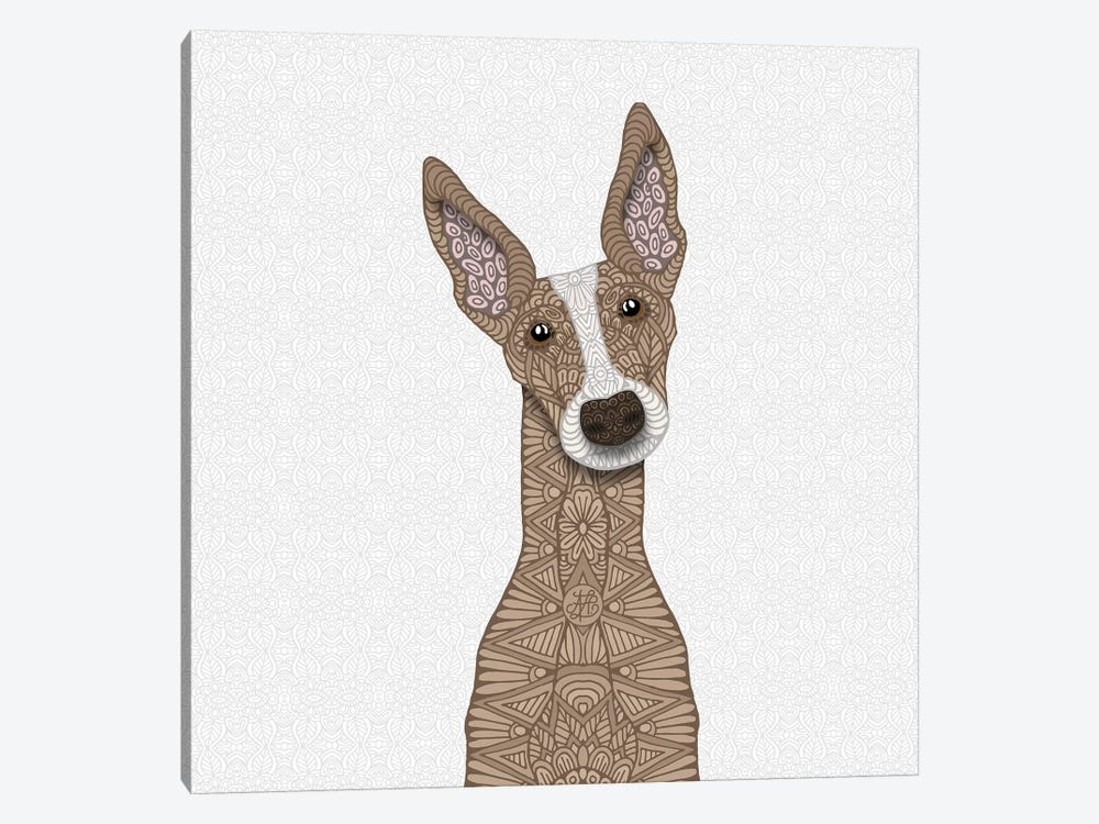 Fawn Greyhound, White Shout by Angelika Parker 1-piece Canvas Wall Art