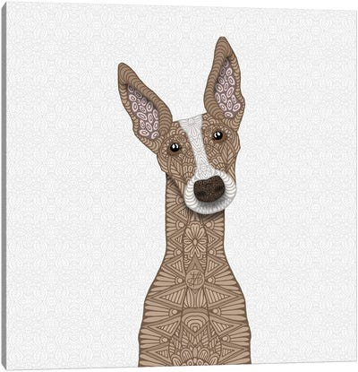 Fawn Greyhound, White Shout Canvas Art Print