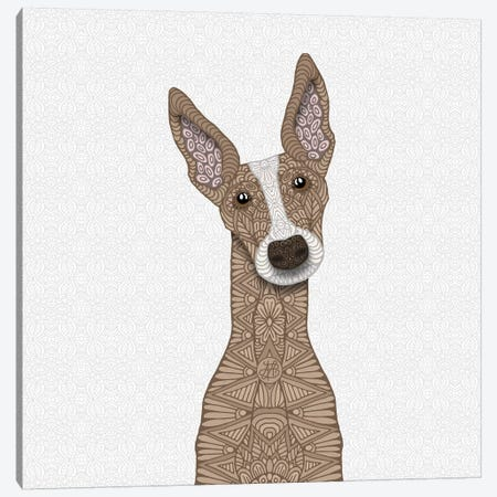 Fawn Greyhound, White Shout Canvas Print #ANG151} by Angelika Parker Canvas Artwork