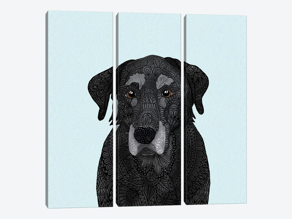 Old Black Lab by Angelika Parker 3-piece Art Print