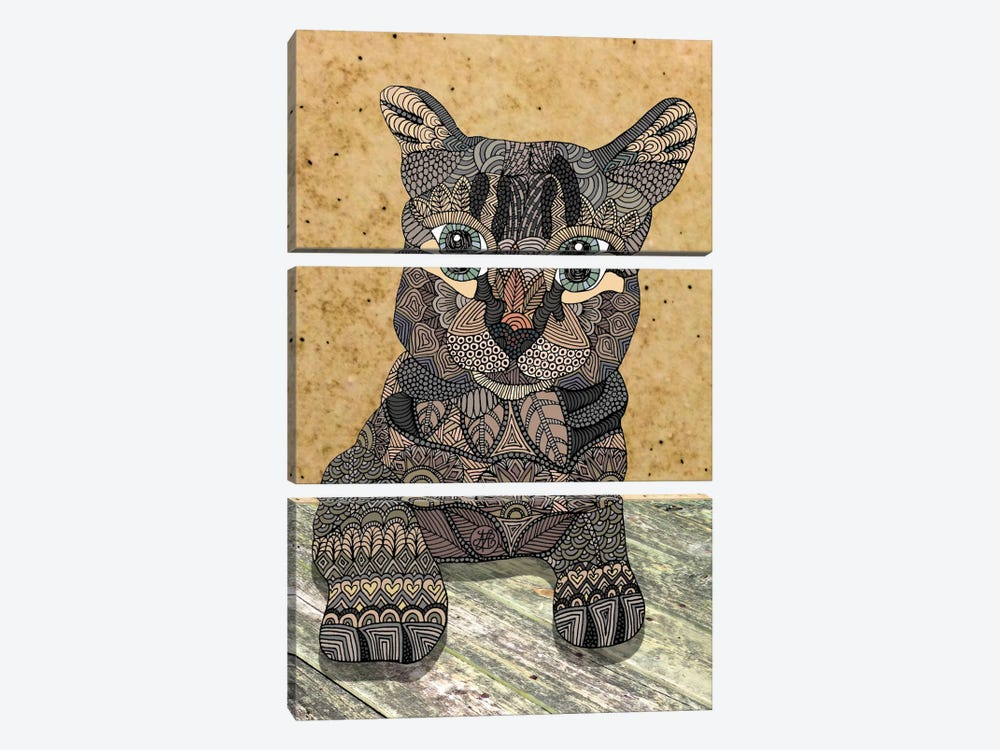 Cat by Angelika Parker 3-piece Canvas Print