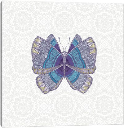 Teal Butterfly Canvas Art Print
