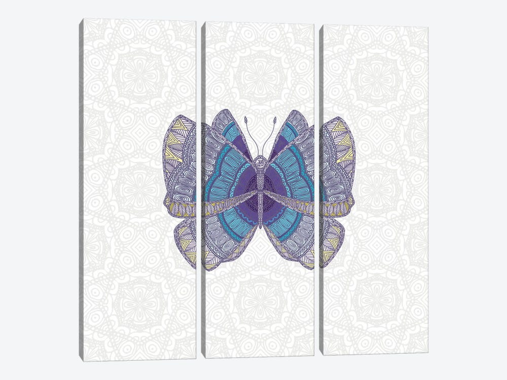 Teal Butterfly by Angelika Parker 3-piece Canvas Print