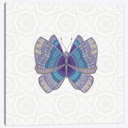 Teal Butterfly Canvas Print #ANG174} by Angelika Parker Art Print