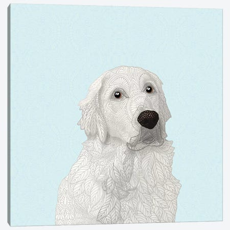 White Retriever Canvas Print #ANG180} by Angelika Parker Canvas Art Print