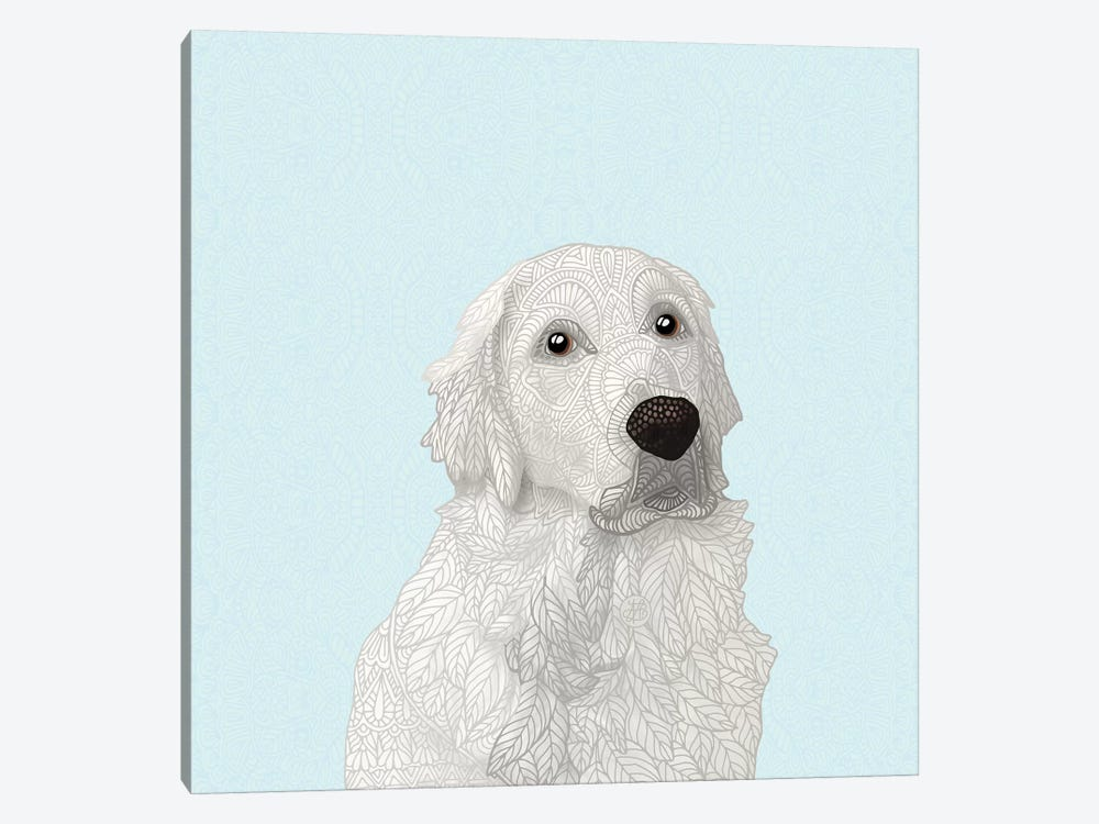 White Retriever by Angelika Parker 1-piece Canvas Wall Art