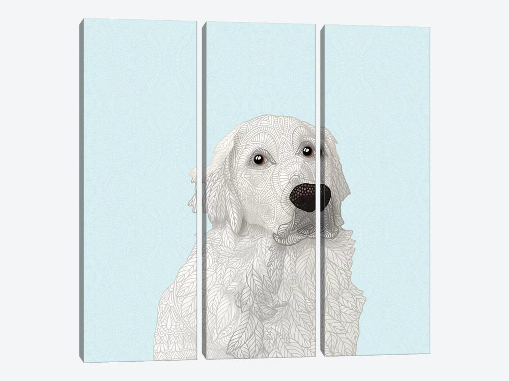 White Retriever by Angelika Parker 3-piece Canvas Wall Art