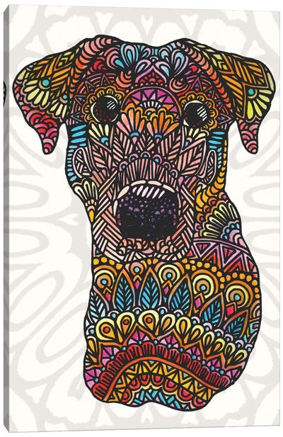 Colorful Roxy Canvas Art Print