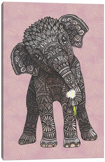 Baby Elephant - Pink by Angelika Parker Canvas Art Print