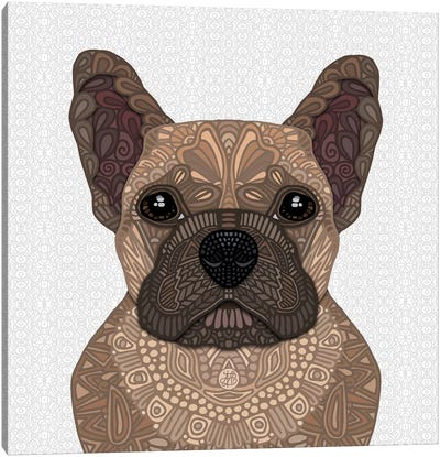 Fawn Frenchie by Angelika Parker Canvas Art Print