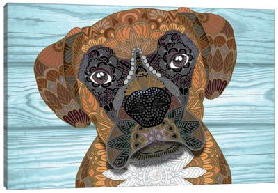 Cute Boxer by Angelika Parker Canvas Print