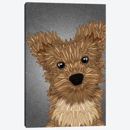 Yorkie Poo Canvas Print #ANG273} by Angelika Parker Canvas Print