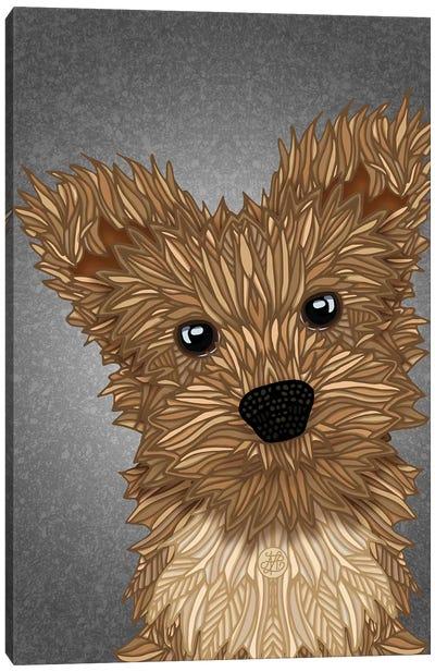 Yorkie Poo Canvas Art Print