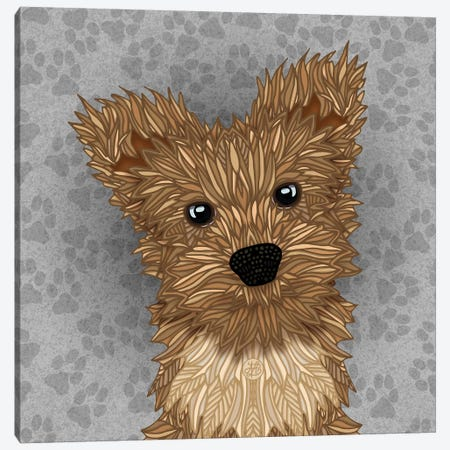 Huie Yorkie Canvas Print #ANG274} by Angelika Parker Canvas Artwork